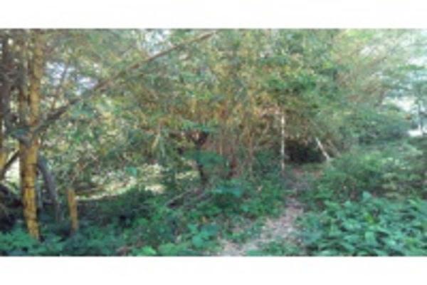 Foto de terreno habitacional en venta en ignacio allende , granjas de alto lucero, tuxpan, veracruz de ignacio de la llave, 5966462 No. 08
