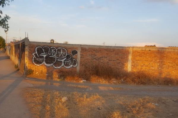 Foto de terreno comercial en renta en independencia , el zapote, irapuato, guanajuato, 4649005 No. 05