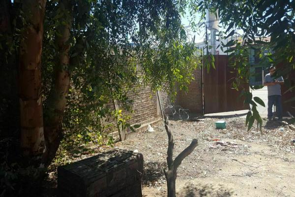 Foto de terreno habitacional en venta en  , independencia, mexicali, baja california, 20255621 No. 18