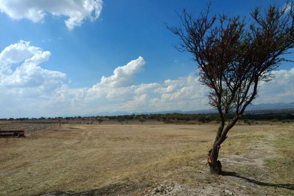 Foto de terreno habitacional en venta en  , montoro, aguascalientes, aguascalientes, 7978202 No. 04
