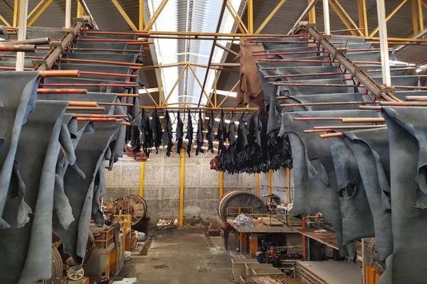 Foto de nave industrial en venta en . ., industrial san crispín, león, guanajuato, 6161006 No. 10