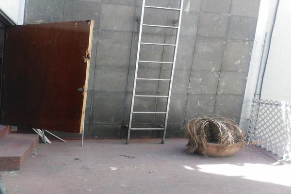 Foto de oficina en renta en  , irrigación, miguel hidalgo, df / cdmx, 20105879 No. 07
