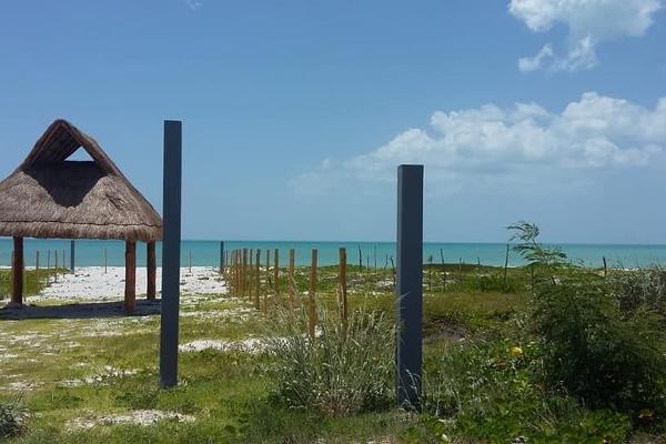 Foto de casa en venta en  , isla aguada, carmen, campeche, 6169434 No. 03