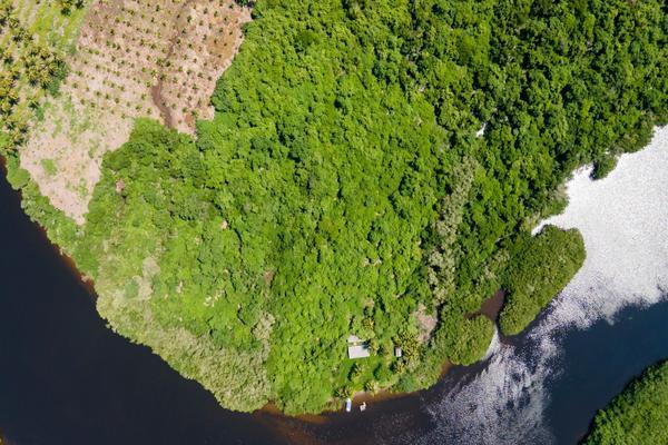 Foto de terreno habitacional en venta en isla potrero del rey, frente al puerto de san blas (ex-hacienda navarrete) lote 9 , san blas centro, san blas, nayarit, 15427586 No. 03