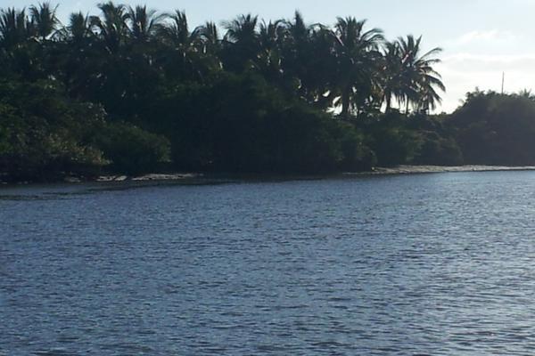 Foto de terreno habitacional en venta en isla potrero del rey, frente al puerto de san blas (ex-hacienda navarrete) lote 9 , san blas centro, san blas, nayarit, 15427586 No. 10