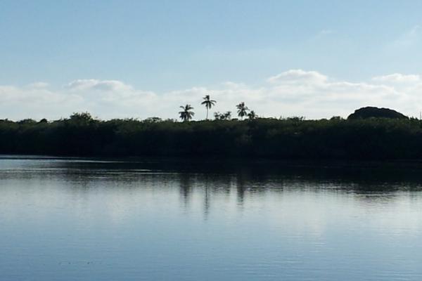 Foto de terreno habitacional en venta en isla potrero del rey, frente al puerto de san blas (ex-hacienda navarrete) lote 9 , san blas centro, san blas, nayarit, 15427586 No. 13