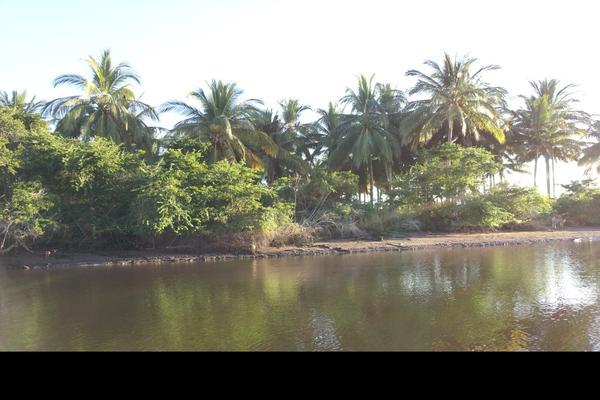 Foto de terreno habitacional en venta en isla potrero del rey, frente al puerto de san blas (ex-hacienda navarrete) lote 9 , san blas centro, san blas, nayarit, 15427586 No. 16