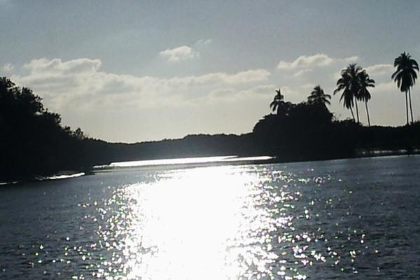 Foto de terreno habitacional en venta en isla potrero del rey, frente al puerto de san blas (ex-hacienda navarrete) lote 9 , san blas centro, san blas, nayarit, 15427586 No. 23