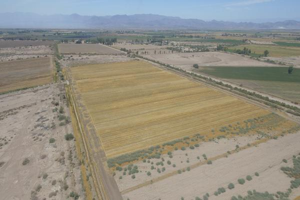 Foto de terreno habitacional en venta en  , islas agrarias b, mexicali, baja california, 12813455 No. 04