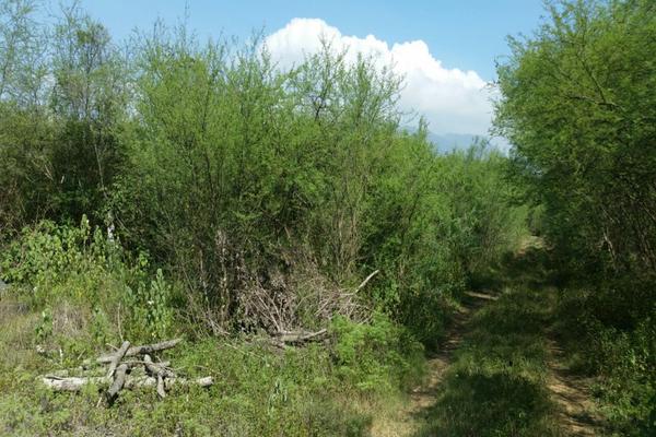 Foto de terreno habitacional en venta en ismael flores cantú , san roque, juárez, nuevo león, 10676738 No. 08