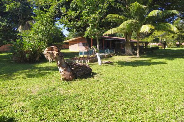 Foto de rancho en venta en  , ixcoalco, medellín, veracruz de ignacio de la llave, 0 No. 20