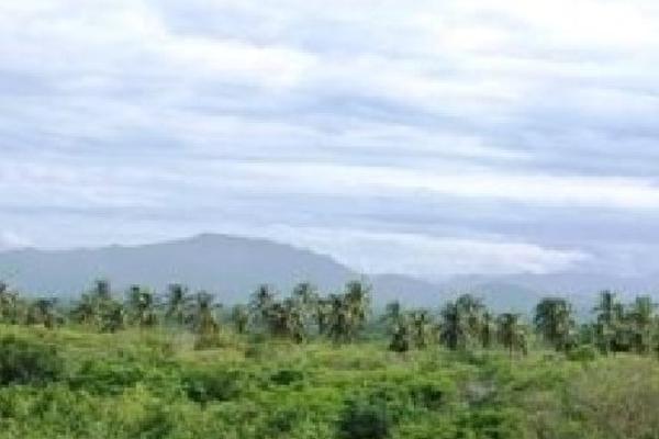 Foto de terreno habitacional en venta en  , ixtapa zihuatanejo, zihuatanejo de azueta, guerrero, 4633016 No. 08