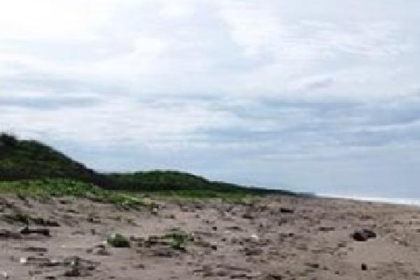 Foto de terreno habitacional en venta en  , ixtapa zihuatanejo, zihuatanejo de azueta, guerrero, 4633016 No. 09