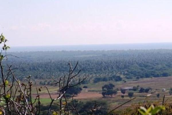 Foto de terreno habitacional en venta en  , ixtapa zihuatanejo, zihuatanejo de azueta, guerrero, 4633016 No. 10