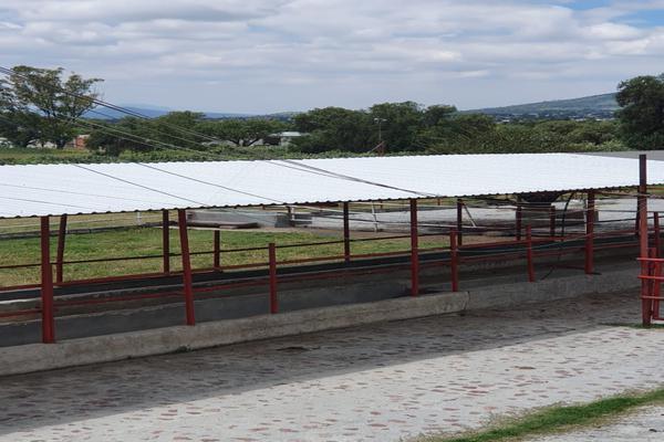 Foto de terreno comercial en renta en  , ixtlahuaca, san martín de las pirámides, méxico, 18423325 No. 11