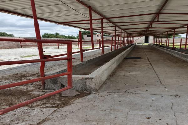Foto de terreno comercial en renta en  , ixtlahuaca, san martín de las pirámides, méxico, 18423325 No. 16