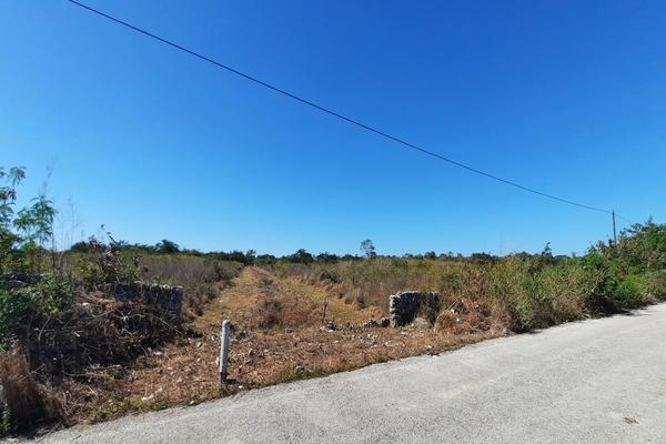 Foto de terreno habitacional en venta en  , izamal, izamal, yucatán, 16059610 No. 04