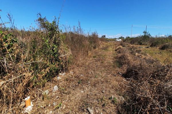 Foto de terreno habitacional en venta en  , izamal, izamal, yucatán, 16059610 No. 05