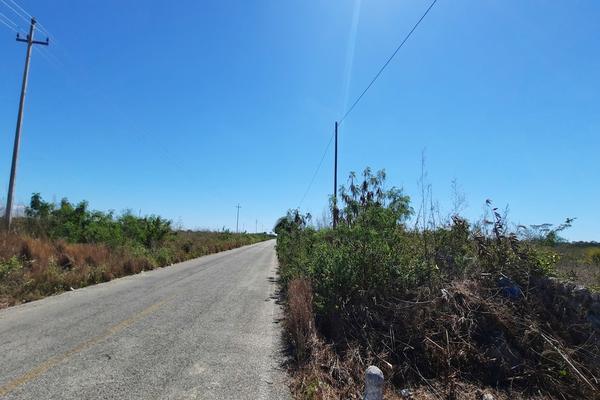 Foto de terreno habitacional en venta en  , izamal, izamal, yucatán, 16059610 No. 06
