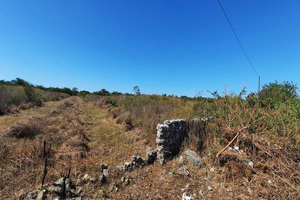 Foto de terreno habitacional en venta en  , izamal, izamal, yucatán, 16059610 No. 07