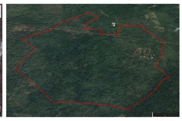 Foto de terreno habitacional en venta en  , izamal, izamal, yucatán, 17511678 No. 02