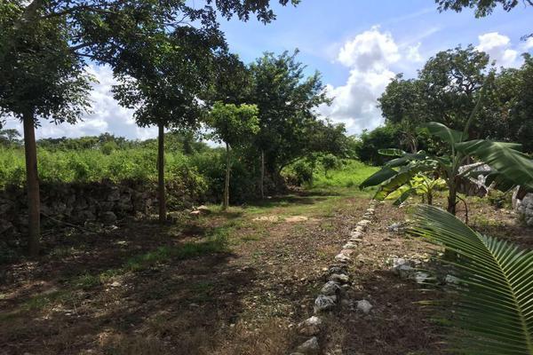 Foto de terreno habitacional en venta en  , izamal, izamal, yucatán, 17831156 No. 04