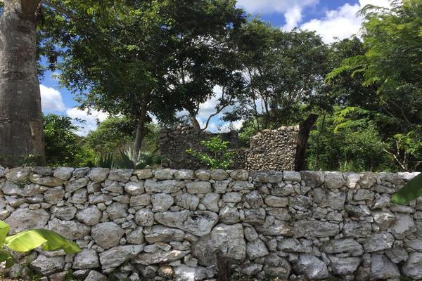 Foto de terreno habitacional en venta en  , izamal, izamal, yucatán, 17831156 No. 05
