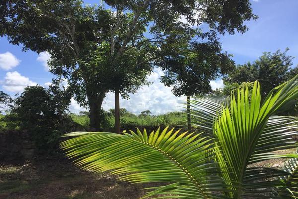 Foto de terreno habitacional en venta en  , izamal, izamal, yucatán, 17831156 No. 06