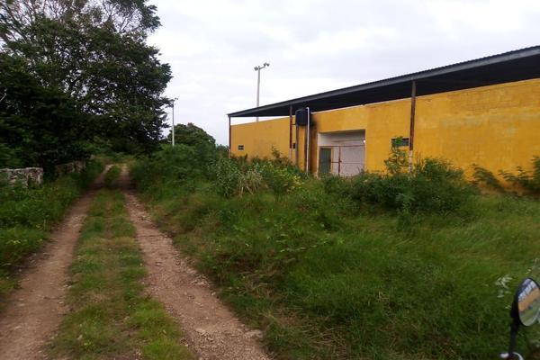 Foto de terreno habitacional en venta en  , izamal, izamal, yucatán, 17835919 No. 04
