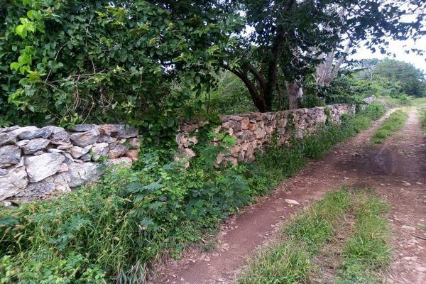 Foto de terreno habitacional en venta en  , izamal, izamal, yucatán, 17835919 No. 07
