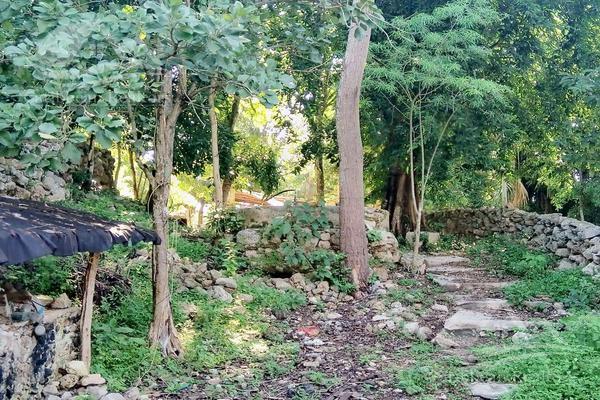 Foto de casa en venta en  , izamal, izamal, yucatán, 19133357 No. 04
