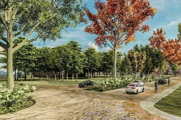 Foto de terreno habitacional en venta en  , izamal, izamal, yucatán, 20413466 No. 05