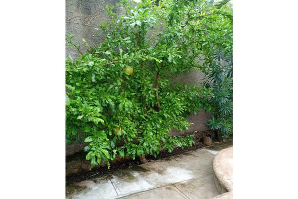 Foto de casa en venta en  , izamal, izamal, yucatán, 21191961 No. 10