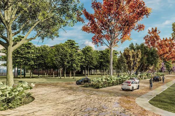 Foto de terreno habitacional en venta en  , izamal, izamal, yucatán, 0 No. 05