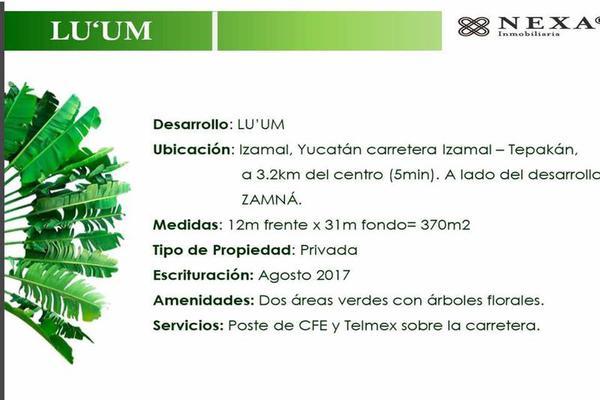 Foto de terreno habitacional en venta en  , izamal, izamal, yucatán, 8421991 No. 02