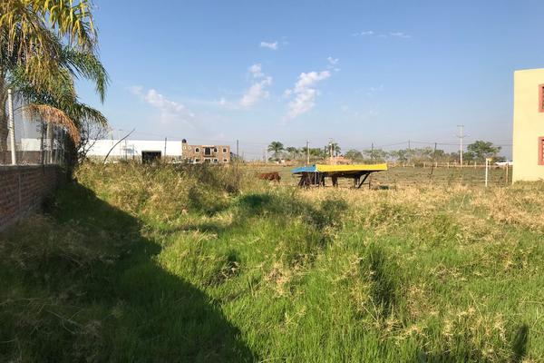 Foto de terreno habitacional en venta en jalisco 326 4.48, lomas del carmen, tepatitlán de morelos, jalisco, 7310778 No. 09