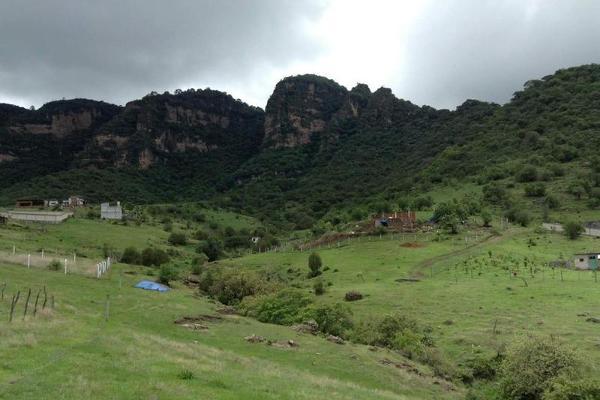 Foto de terreno habitacional en venta en  , jalmolonga, malinalco, méxico, 8883152 No. 01