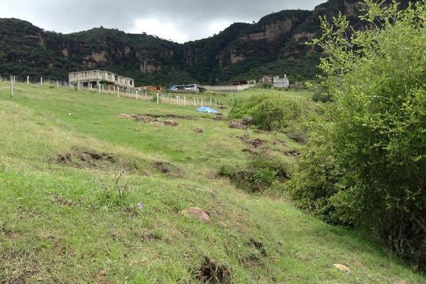 Foto de terreno habitacional en venta en  , jalmolonga, malinalco, méxico, 8883152 No. 02