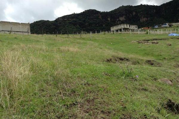 Foto de terreno habitacional en venta en  , jalmolonga, malinalco, méxico, 8883152 No. 03