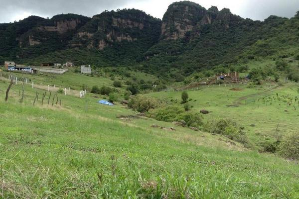 Foto de terreno habitacional en venta en  , jalmolonga, malinalco, méxico, 8883152 No. 05