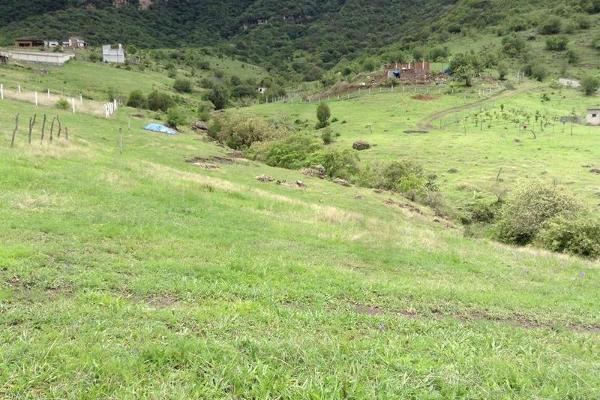 Foto de terreno habitacional en venta en  , jalmolonga, malinalco, méxico, 8883152 No. 06
