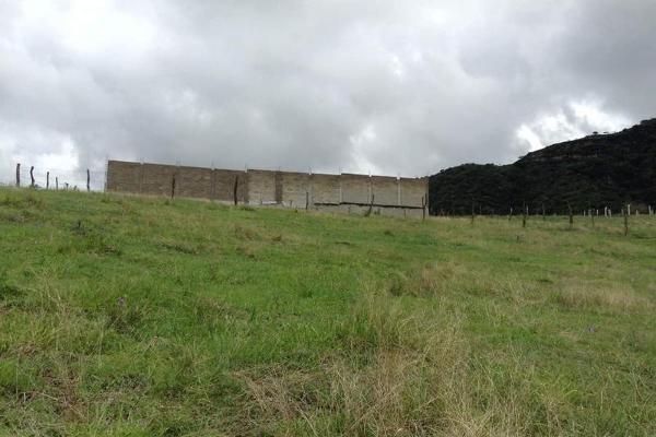 Foto de terreno habitacional en venta en  , jalmolonga, malinalco, méxico, 8883152 No. 08