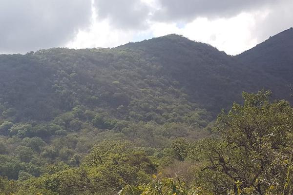 Foto de terreno comercial en venta en jalpan de serra , villas jalpan, jalpan de serra, querétaro, 20069028 No. 04