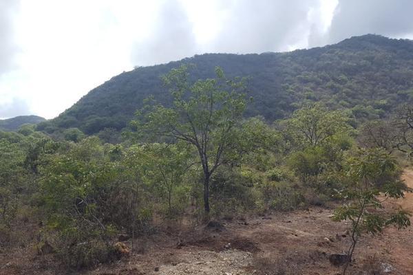 Foto de terreno comercial en venta en jalpan de serra , villas jalpan, jalpan de serra, querétaro, 20069028 No. 06