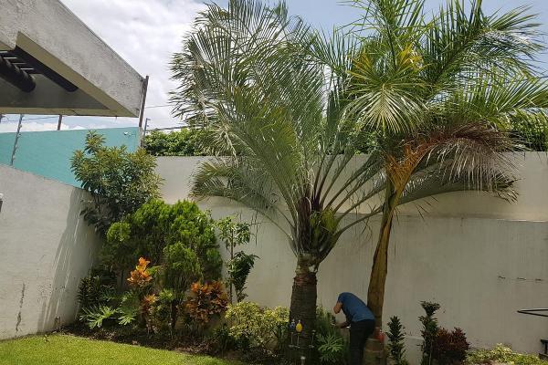 Foto de casa en renta en  , jardines de cuernavaca, cuernavaca, morelos, 8003942 No. 11