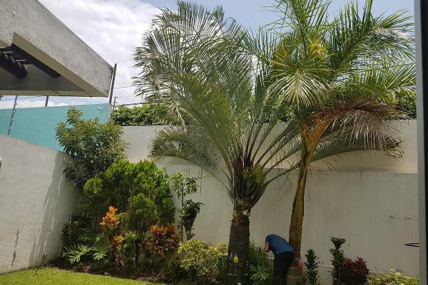 Foto de casa en renta en  , jardines de cuernavaca, cuernavaca, morelos, 8003942 No. 13
