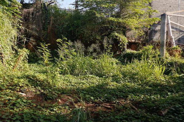 Foto de terreno habitacional en venta en  , jardines del arroyo, san juan bautista tuxtepec, oaxaca, 0 No. 04