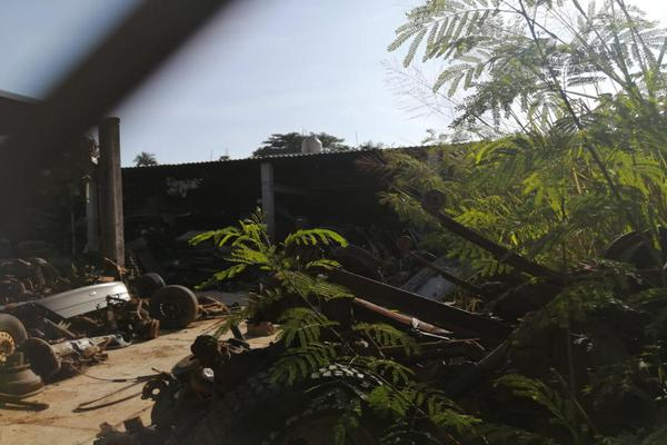Foto de terreno habitacional en venta en  , jardines del arroyo, san juan bautista tuxtepec, oaxaca, 0 No. 06