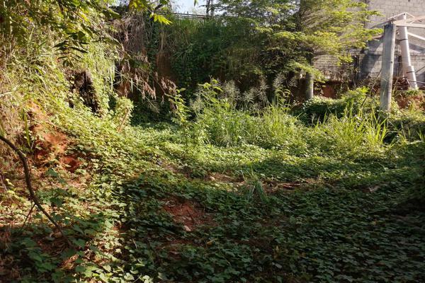 Foto de terreno habitacional en venta en  , jardines del arroyo, san juan bautista tuxtepec, oaxaca, 0 No. 07