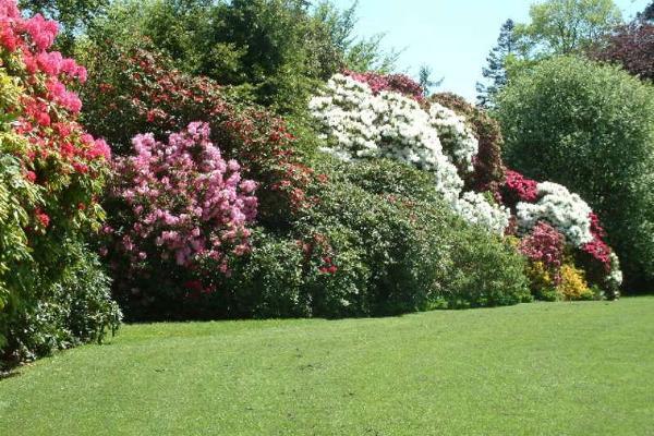 Foto de casa en venta en  , jardines del pedregal, álvaro obregón, distrito federal, 2729402 No. 04